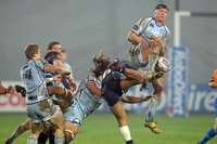 Zebre v Cardiff Blues, 25/11/2012